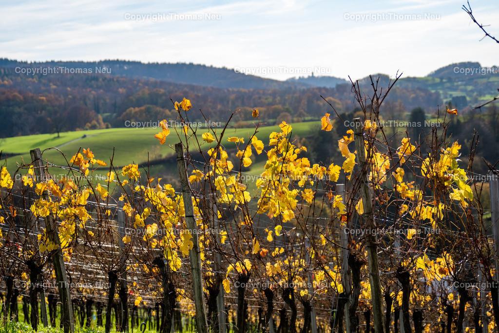 DSC_5369   bbe,Bensheim, Herbststimmung oberhalb von Gronau, Herbst, Herbstfärbung, November, ,, Bild: Thomas Neu