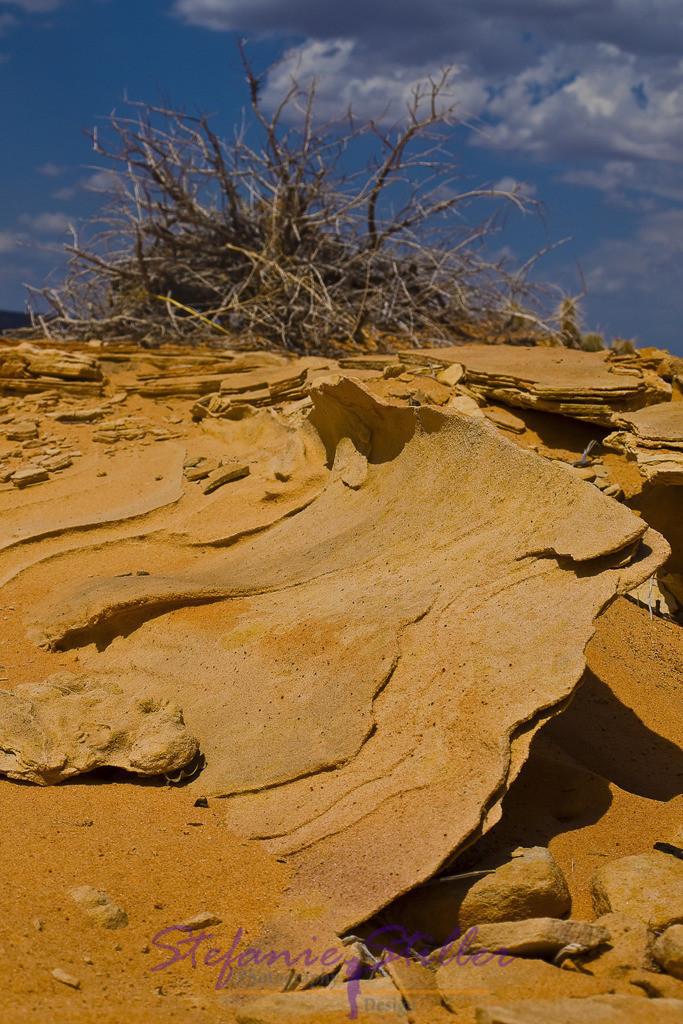 Filigran | Filigrane Sandsteingebilde