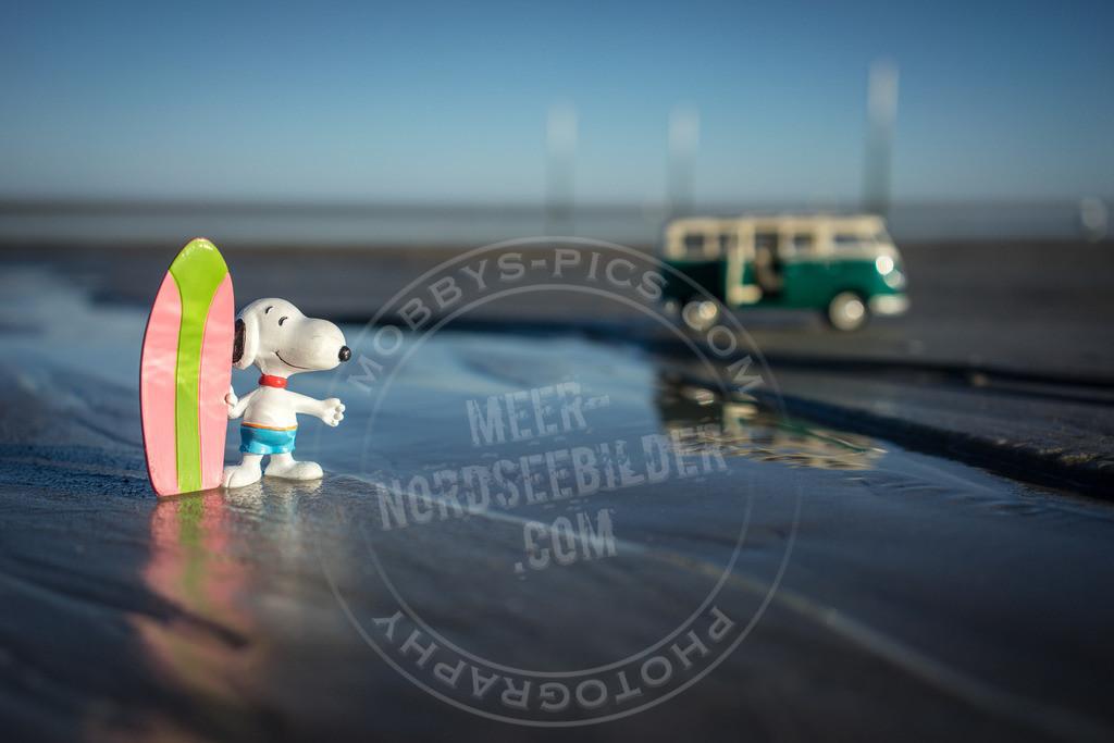 _DSC3358 | Snoopy on Tour