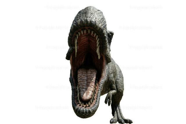 Tyranosaurus Rex | Ein mit weit aufgerissenem Maul Tyranosaurus Rex über weißem Hintergrund