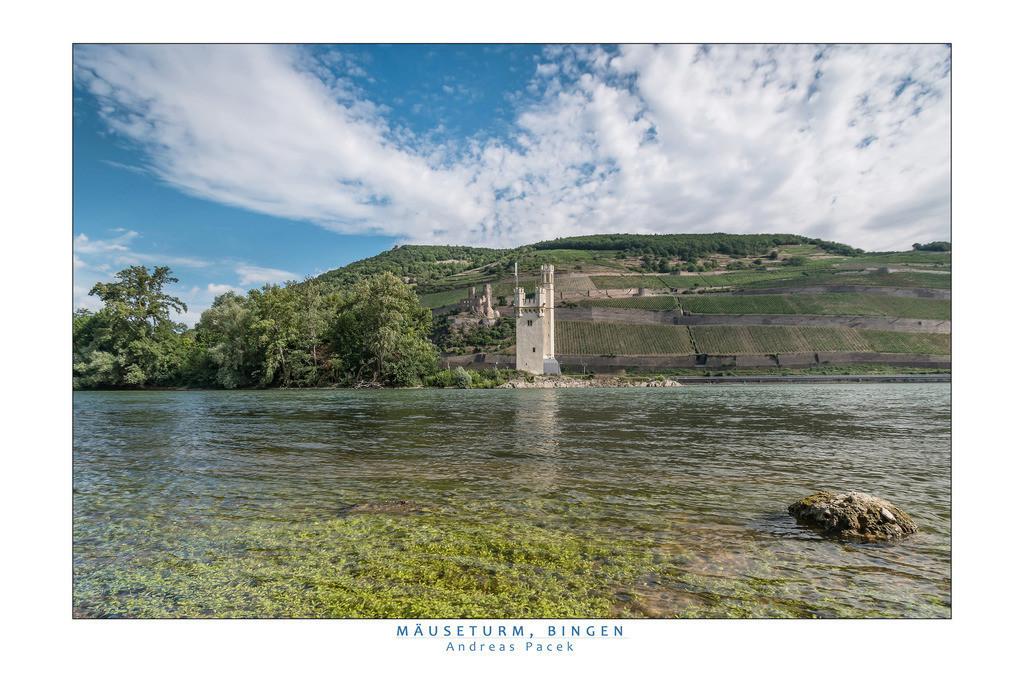 Mäuseturm, Bingen | Die Serie 'Leuchtender Rhein' zeigt den Rhein in leuchtenden Farben.