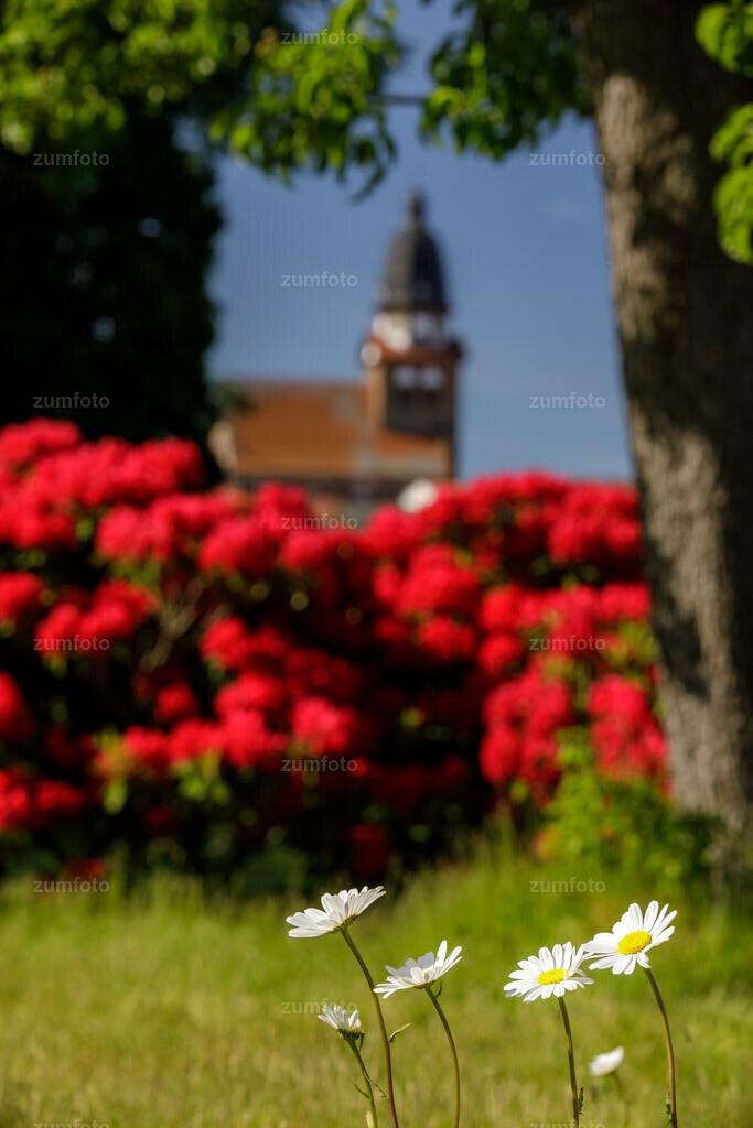 200529_0910-1493 | Ich wünsche euch schöne Restpfingsten! Ich hoffe ihr habt den heutigen sonnigen Tag genossen! Ich hoffe euch gefällt das Bild auch wenn der Fokus auf den Blumen liegt.  Ich denke ihr wisst wo ich das Foto aufgenommen habe oder?