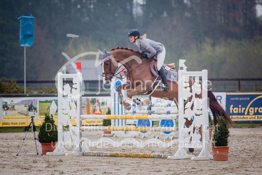 190404_Frühlingsfest_Sprpf-A-103   Frühlingsfest Herford 2019 Springpferdeprüfung Klasse A**