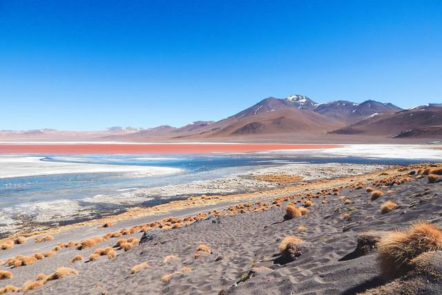 Altiplano   Panorama der Laguna Colorada (Farbige Lagune) im Altiplano in Bolivien