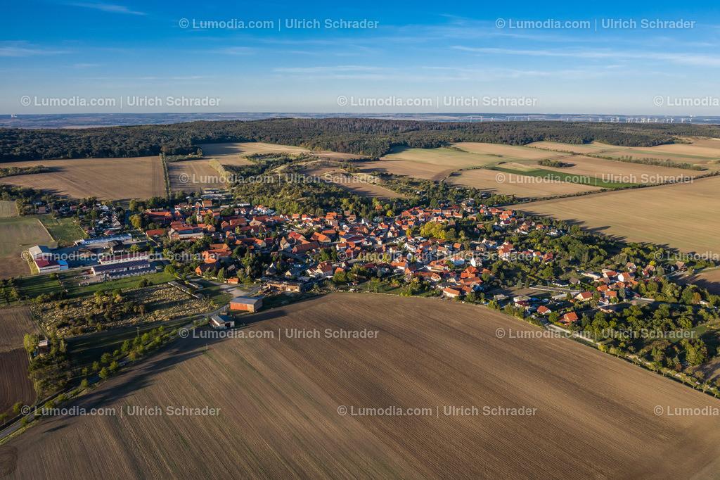10049-50767 - Sargstedt bei Halberstadt