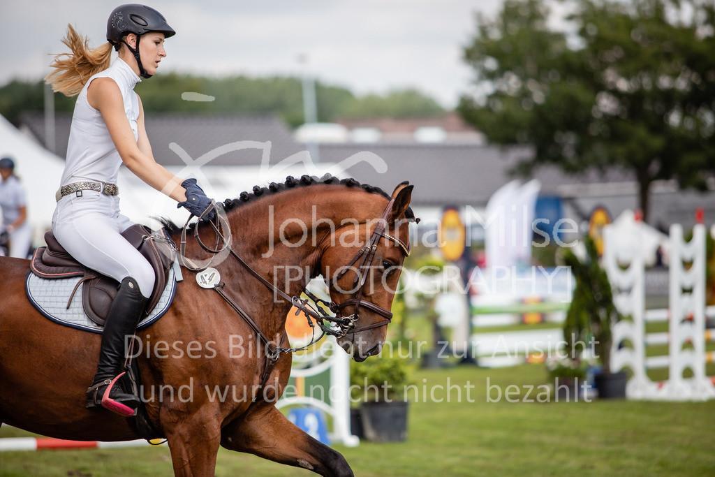 190719_LC_SprPf-A-032   Lopshorn Classics 2019 Springpferdeprüfung Kl. A** 4-5 jährige Pferde