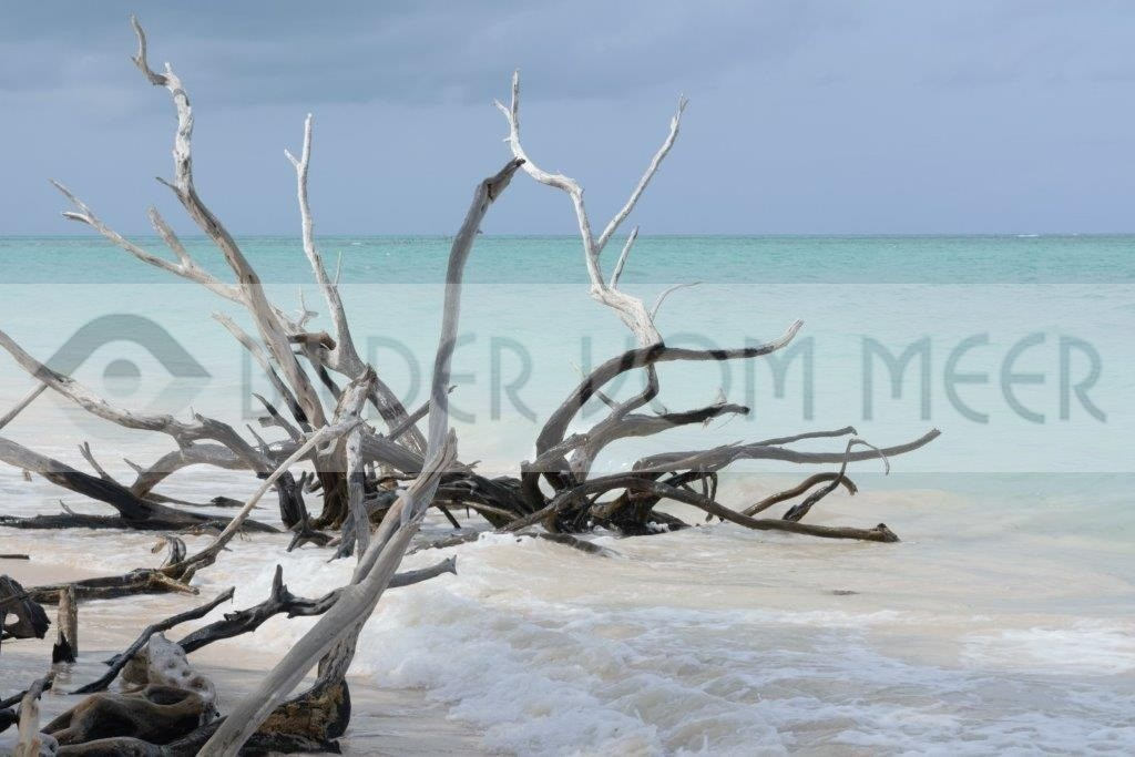 Strand Bilder vom Meer | Strandbilder der kubanischen Insel Cayo Jutías