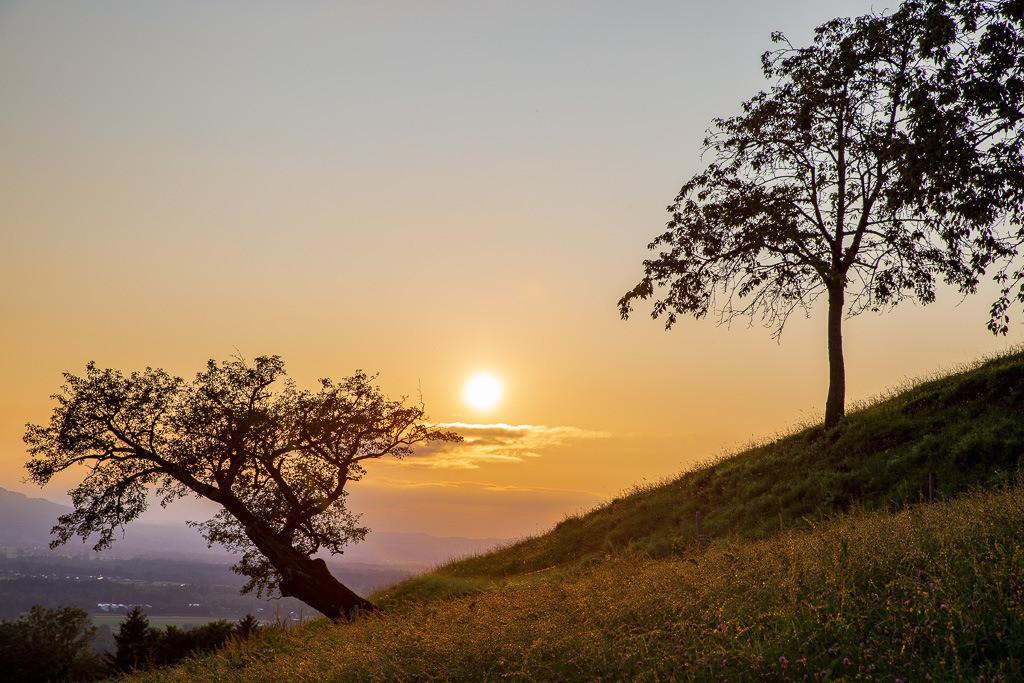 Abendrot | Schöne Sonnenuntergangsstimmung in der Nähe vom Dandlberg.