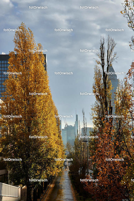2018-11-11 Frankfurt 035_009