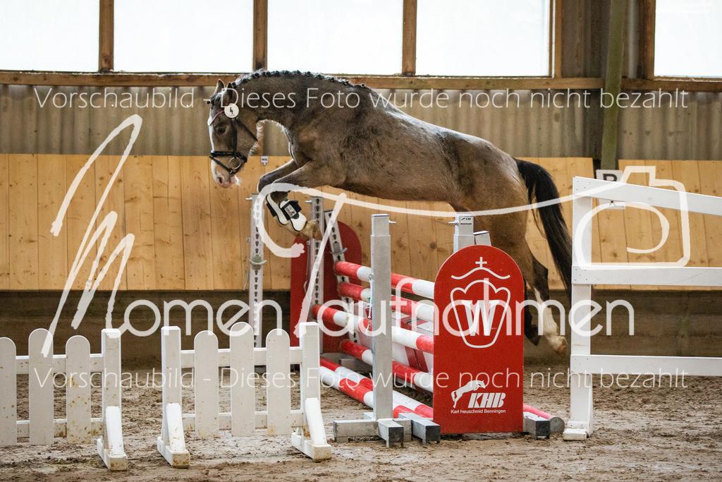 Freispringen-Pony-3j-30