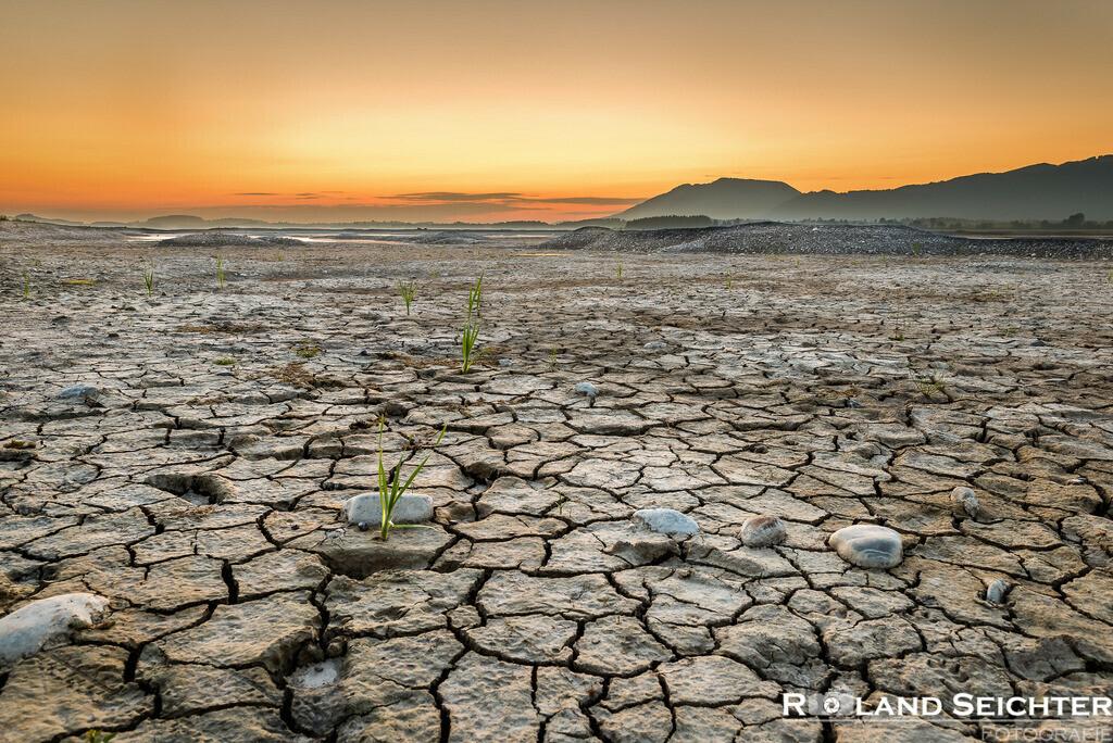 Forggensee Dry | Kalenderblatt Juni
