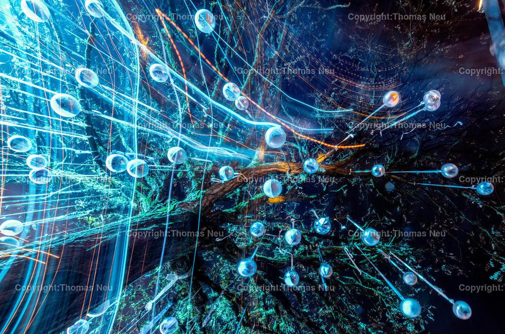 DSC_3971 | ble,Lorsch, blaues Weihnachtswunder, Innenstadt, ,, Bild: Thomas Neu