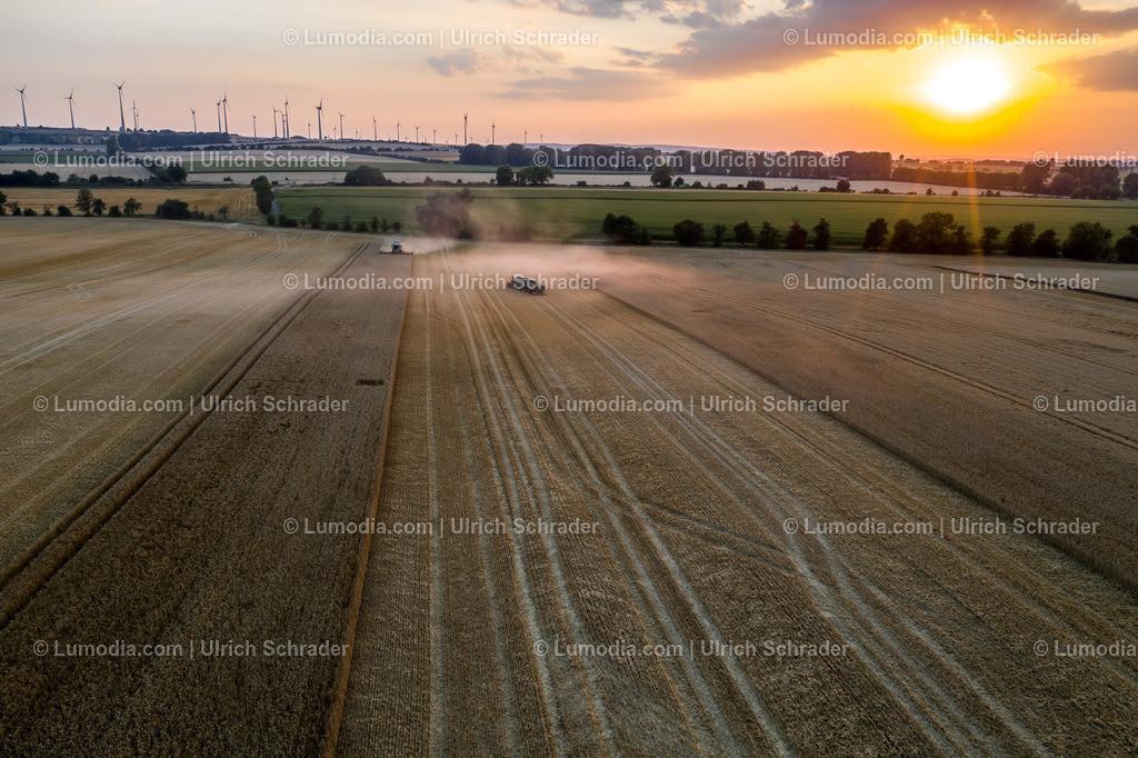 10049-50701 - Getreideernte bei Badersleben