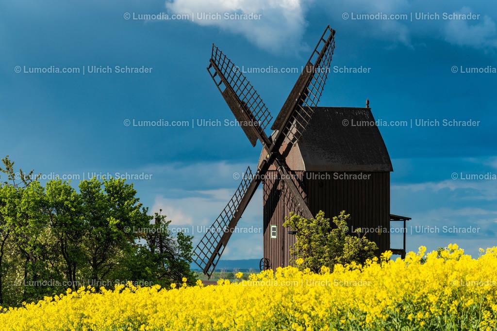 10049-12255 - Windmühle in Anderbeck _ Gemeinde Huy
