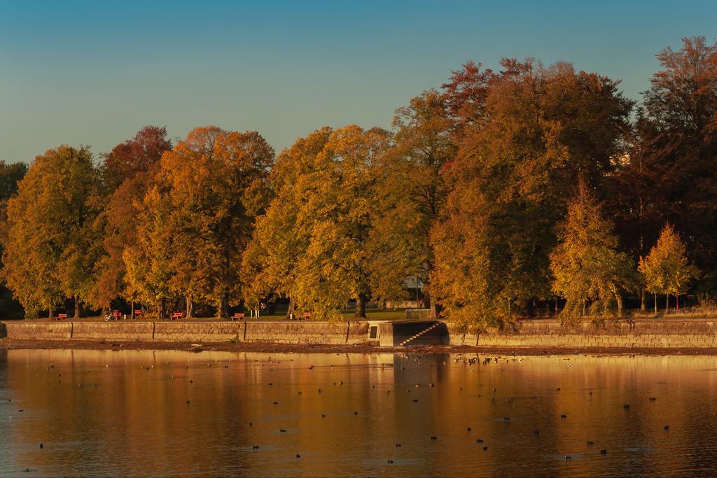Herbstfarbe2