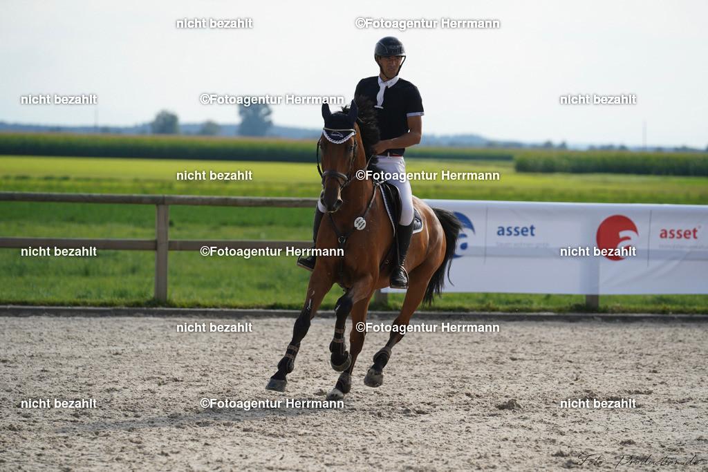 20190914-F_P09921   Horse Gym´s Landios, Honsolgen, 2019