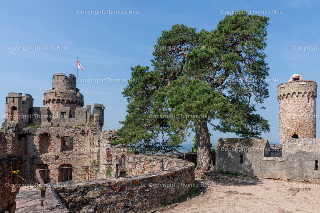 DSC_0083   Bensheim, Auerbach, Schloss Auerbach, Burg, Mittelalter, Ruine, ,, Bild: Thomas Neu