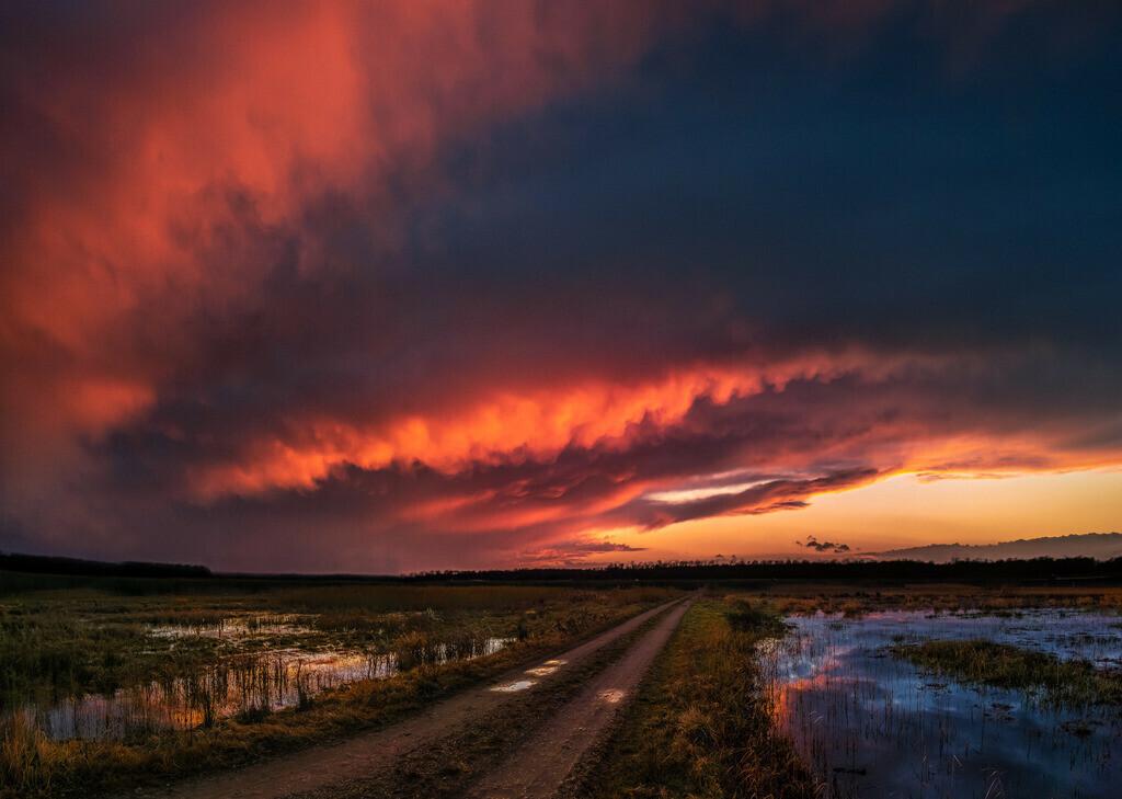 Burning Sky | Brennender Abendhimmel im Ried