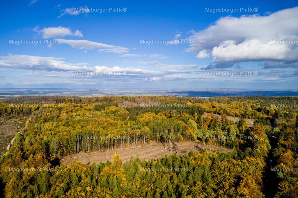 Harz im Herbst-Thale-0004