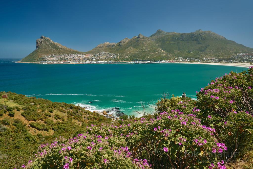 Chapman's Peak Drive | Die Route am Chamans Peak bietet einmalige Aussichten auf die Buchten des Atlantik bei Kapstadt.
