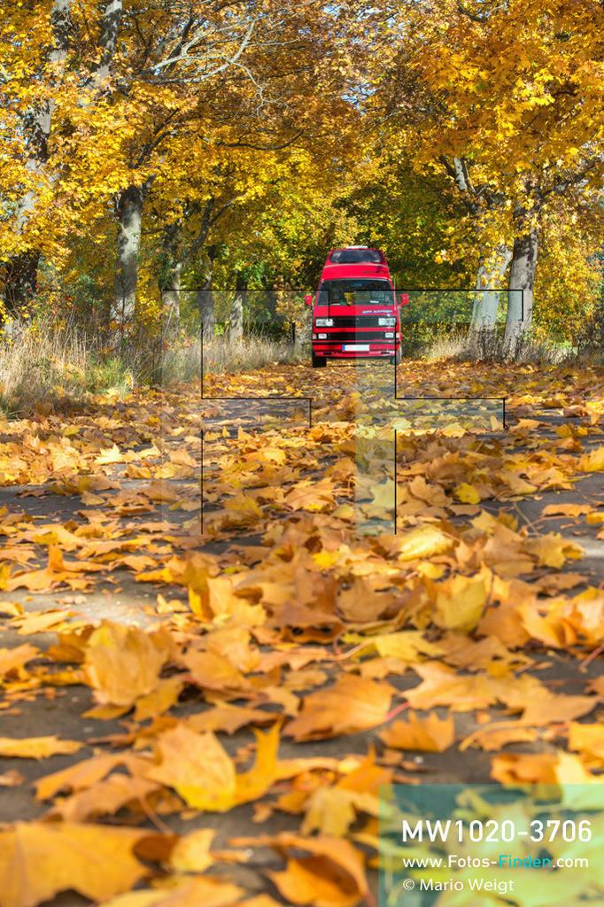 MW1020-3706 | Deutschland | Brandenburg | VW T3 Westfalia Atlantic | Mit dem Bulli unterwegs in Deutschland  ** Feindaten bitte anfragen bei Mario Weigt Photography, info@asia-stories.com **