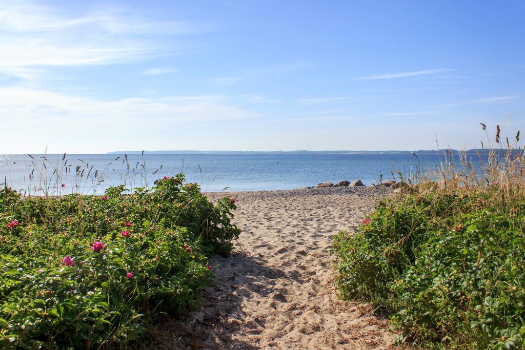 Strand in Langholz | Weg zum Strand in Langholz