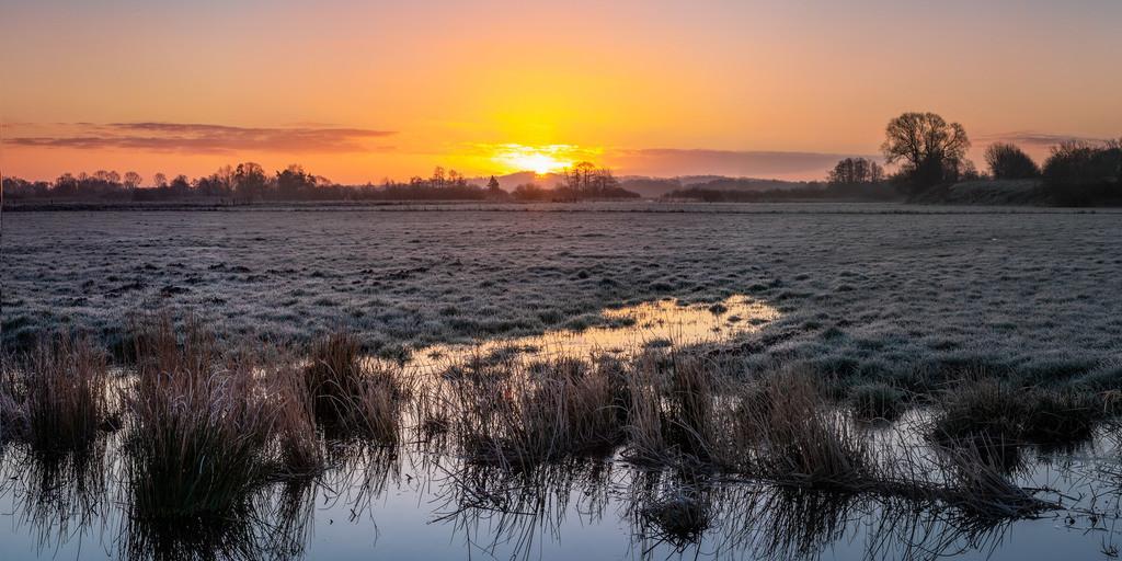 Sonnenaufgang in den Hammewiesen | Sonnenaufgang im Frühjahr 2020 in den Hammewiesen.