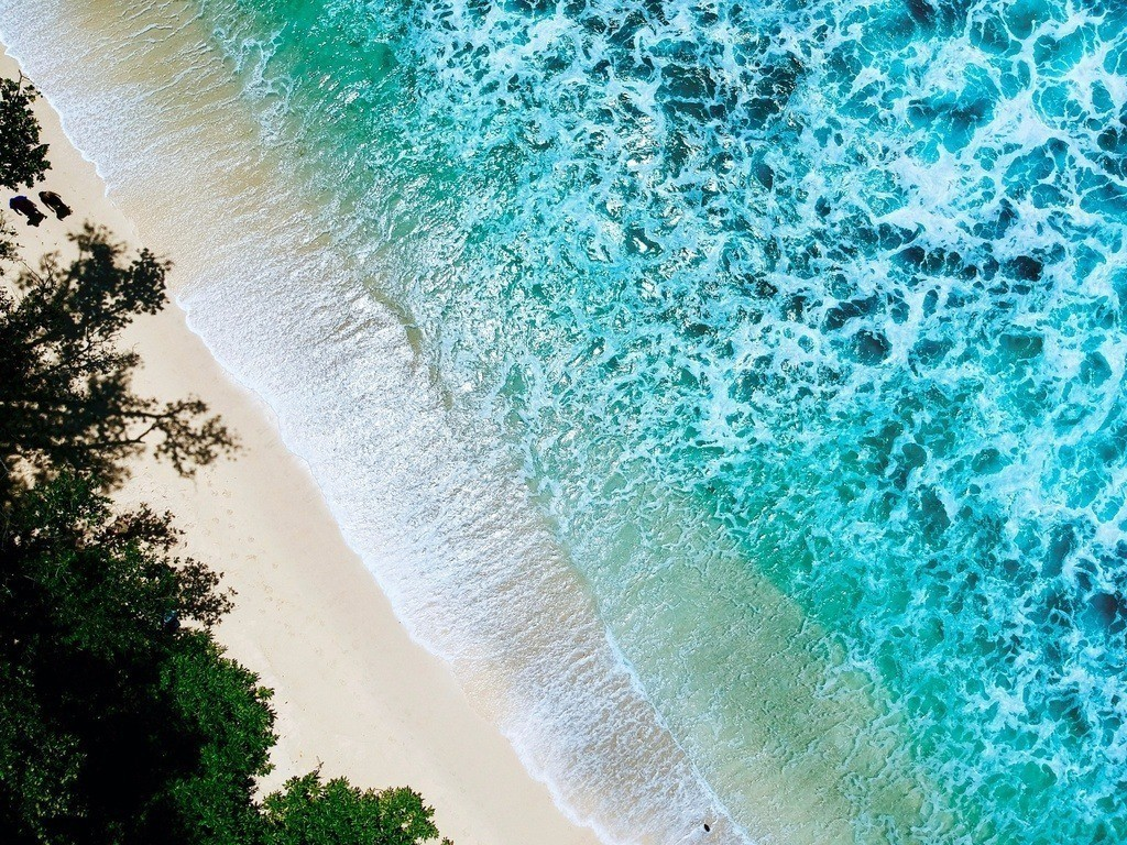 Drohnenaufnahme vom einsamen Strand  | Luftbild eines einsamen Strandes auf der Insel Mahe