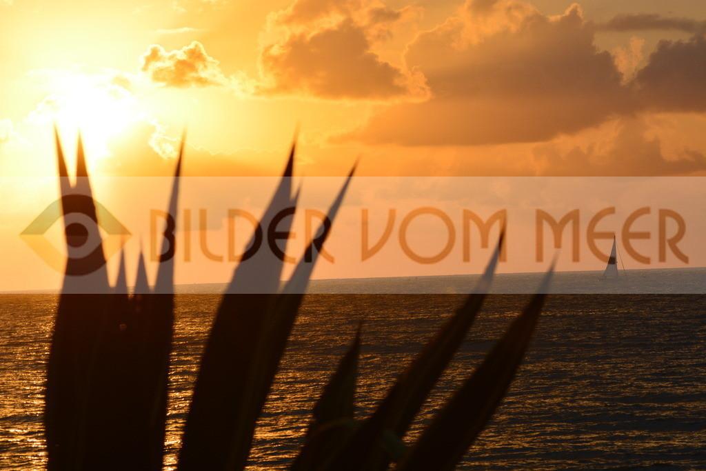 Bilder vom Meer | Bilder vom Meeer bei Sonnenaufgang