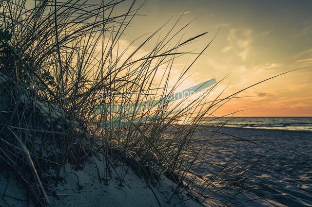 Gericht by Kurt Gruhlke-4624
