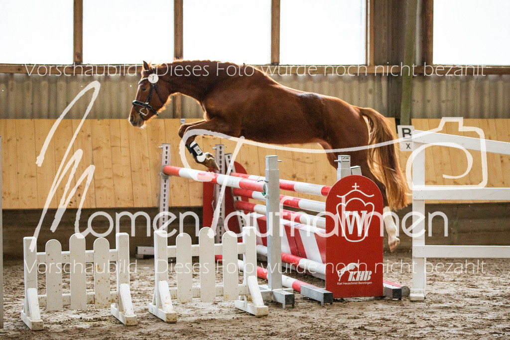 Freispringen-Pony-3j-05