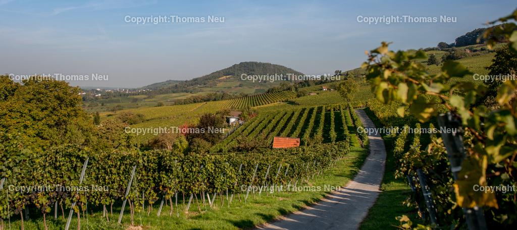 Bergstrasse | Weinberge zwischen Heppenheim und Bensheim, Blick auf den Hemsberg, ,, Bild: Thomas Neu