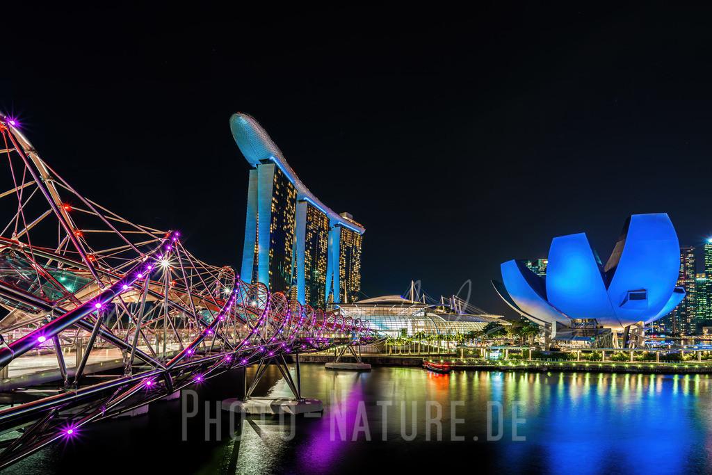 Eine künstliche Blume in der Metropole | Farbenspiel im nächtlichen Singapur