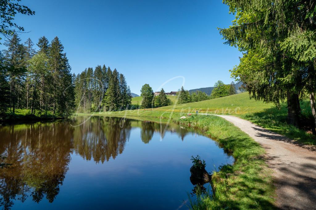 Weiher | Der Vogelsberg Weiher in Kitzbühel