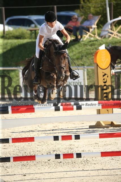 Durmersheim_2020_Amazonen-Springprfg_Kl.S_Barbara Steurer-Collee_Salt_N Pepper (15)