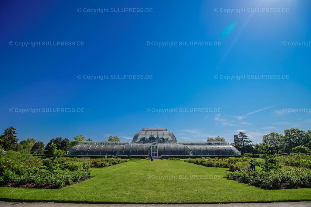 Palm House - Royal Botanic Gardens Kew Gardens in London | 15.05.2018, die Royal Botanic Gardens, Kew (Kew Gardens) sind eine ausgedehnte Parkanlage mit bedeutenden Gewächshäusern. Sie liegen zwischen Richmond upon Thames und Kew im Südwesten Londons und zählen zu den ältesten botanischen Gärten der Welt. Außenansicht vom Palm House (Tropenhaus), dem ältesten noch existierenden viktorianischen Gewächshaus, entstanden nach Plänen des englischen Architekten Decimus Burton (1844–48), erbaut vom Eisengießer Richard Turner.