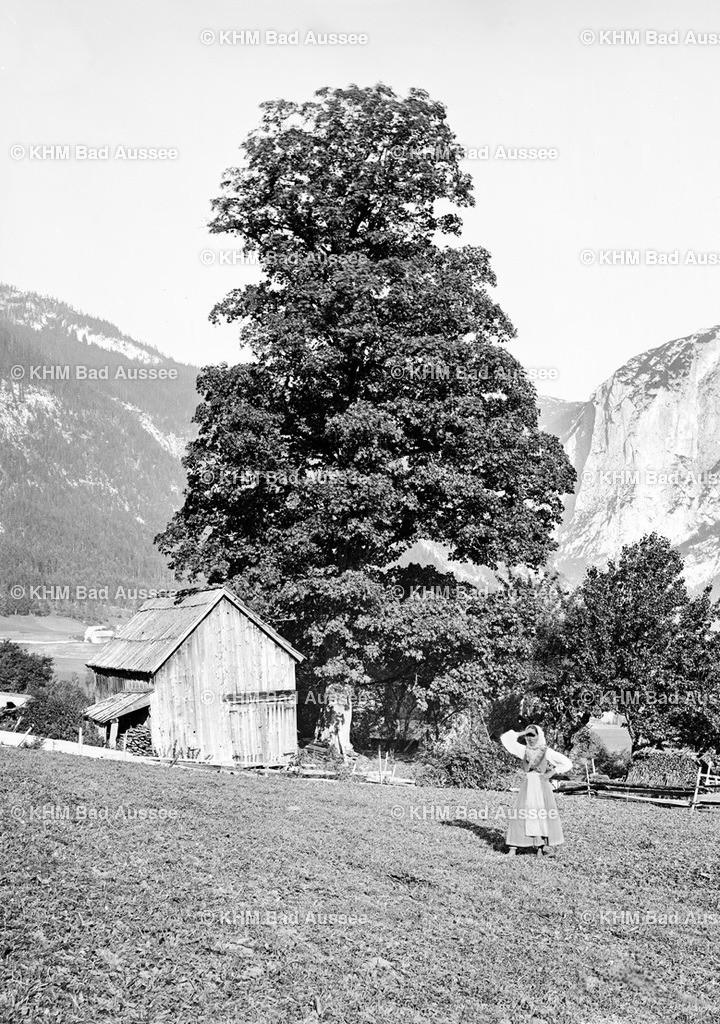 AA_Bauernanwesen | Unbekanntes Bauernanwesen in Altaussee