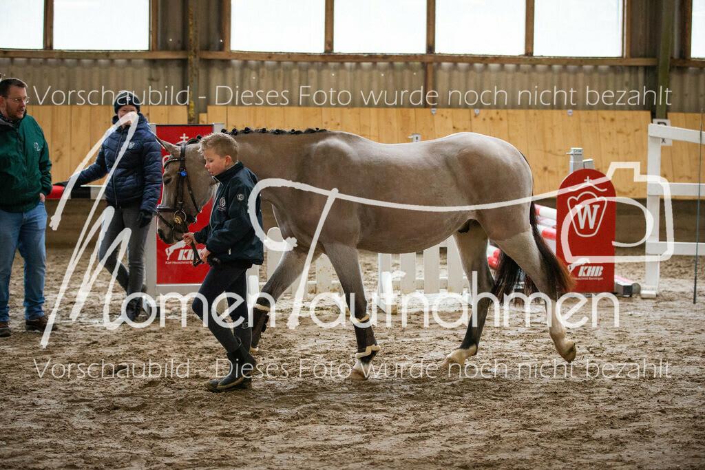 Freispringen-Pony-3j-45