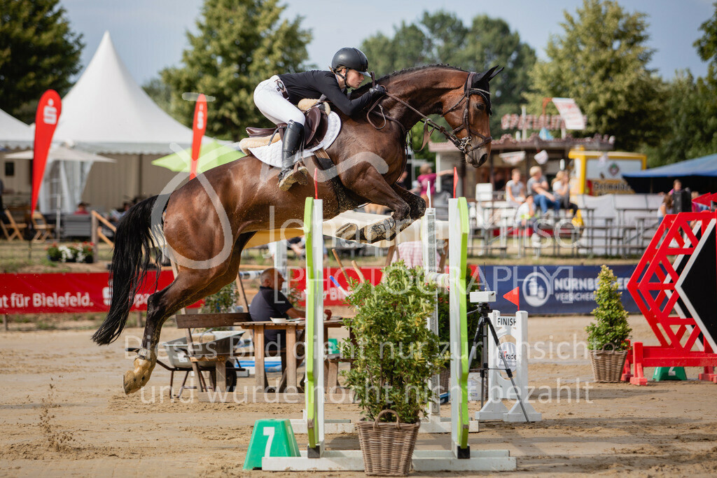 190801_BST_Springpferde-M_5-7J-413 | Braker Sommerturnier 2019 Springpferdeprüfung Kl. M* 5-7jährige Pferde