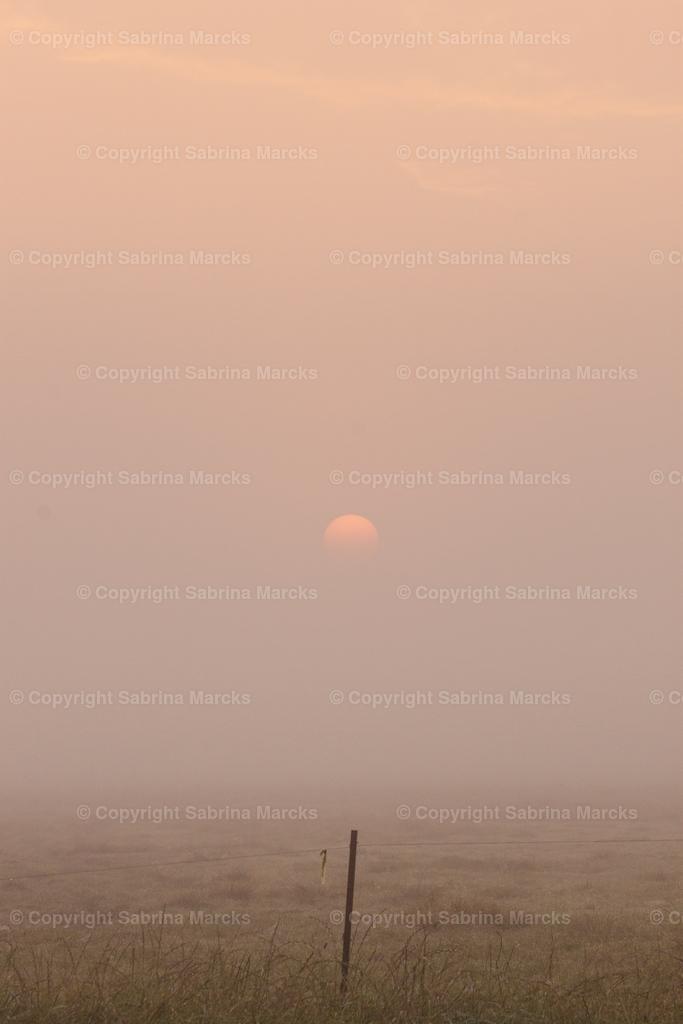 Sonnenaufgang5