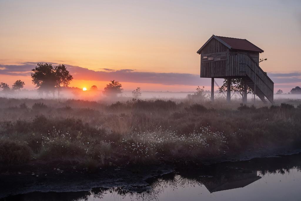 Der Tag erwacht, Recker Moor | Die Serie 'Deutschlands Landschaften' zeigt die schönsten und wildesten deutschen Landschaften.