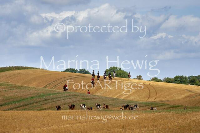 Jagd Knoop 217490_Marina Hewig