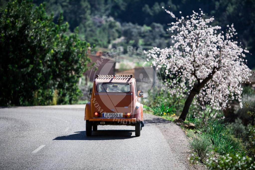 MR201204290106_MI1   Impressionen Mallorca