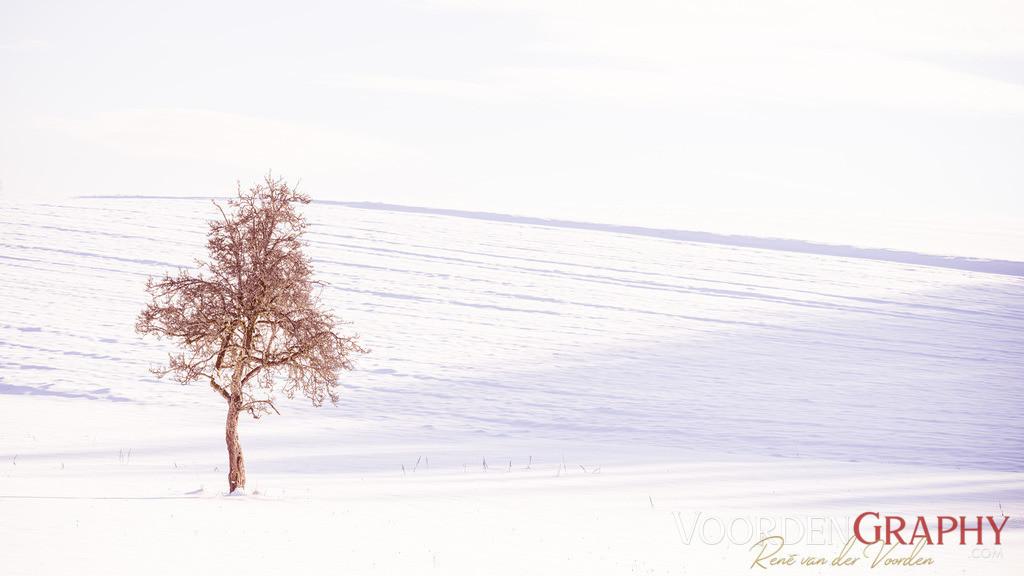 In der Stille des Winters liegt die Kraft für das Neue