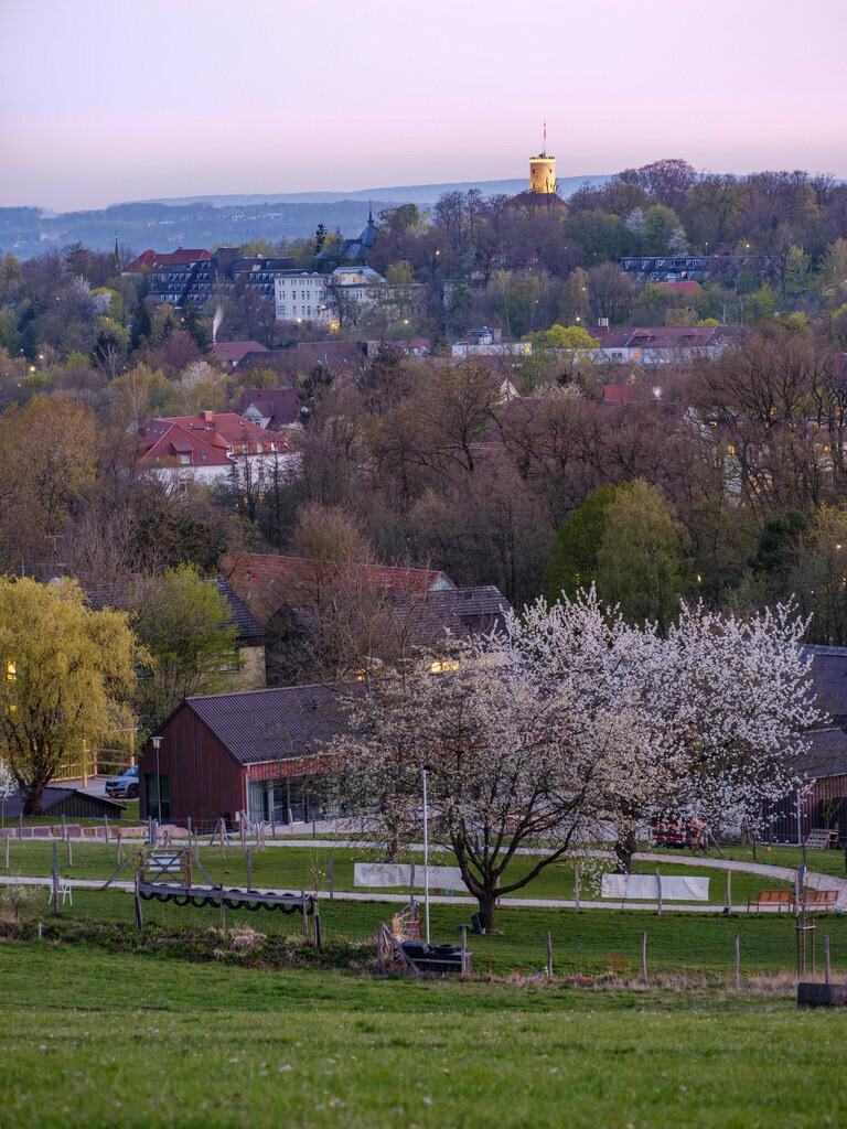 Bielefeld-Bethel vor Sonnenaufgang | Blick über Bielefeld-Bethel kurz vor Sonnenaufgang mit der beleuchteten Sparrenburg im Hintergrund.