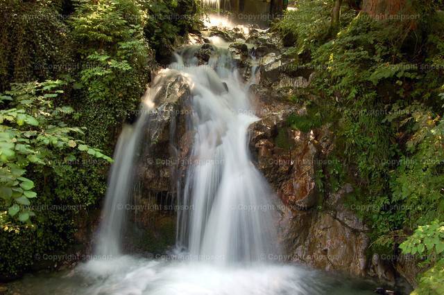 Wasserfall | Ein malerischer Wasserfall in einem Wald.