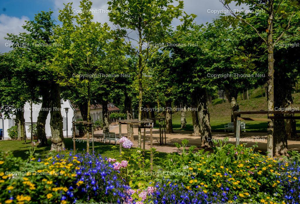 _DSC3981 | Bensheim,Auerbach, staatspark Fuerstenlager, ,, Bild: Thomas Neu