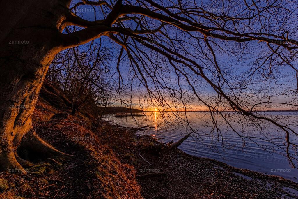 200116_1608-8159-HDR   Bei dem tristen Winterwetter ohne Winter kommt hier ein Foto von Donnerstag. Dieses Fotos habe ich auch am Plauer See gemacht. Wünsche euch einen schönen Abend!