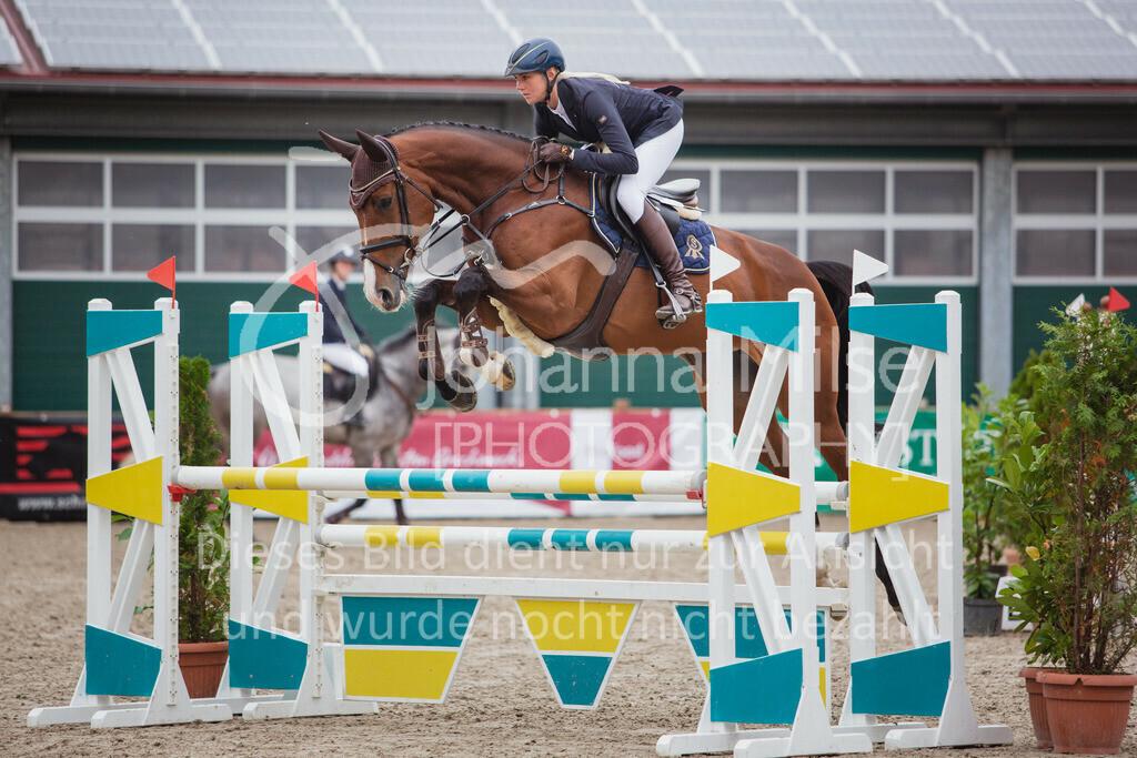 200929_LateEntryMühlen_Sprpf-L2-214 | Mühlen Late Entry 29.-30.09.2020 Springpferdeprüfung Kl. L 2. Abtlg. 4-7j Pferde