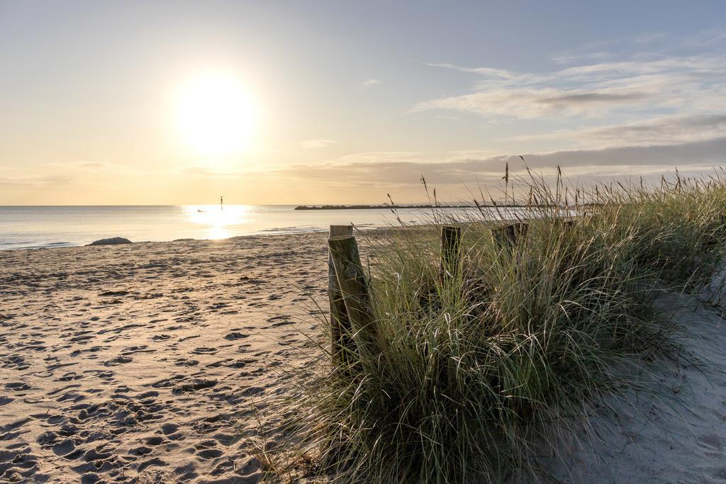 Sonnenaufgang an der Ostsee   Strandhafer am Sandstrand